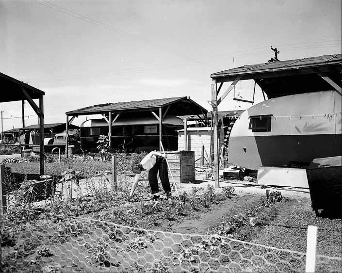 Government photo shows a woman tending to her vegatable garden next to her family's vintage trailer, at Project Hanford Trailer City