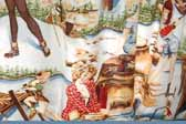 This photo shows a swatch of retro fabric with cute outdoor sports pinup girls, for your vintage trailer