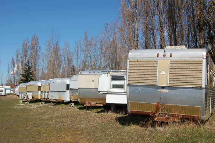 Large collection of Silver Streak Trailers stored in a vintage trailer Junk Yard