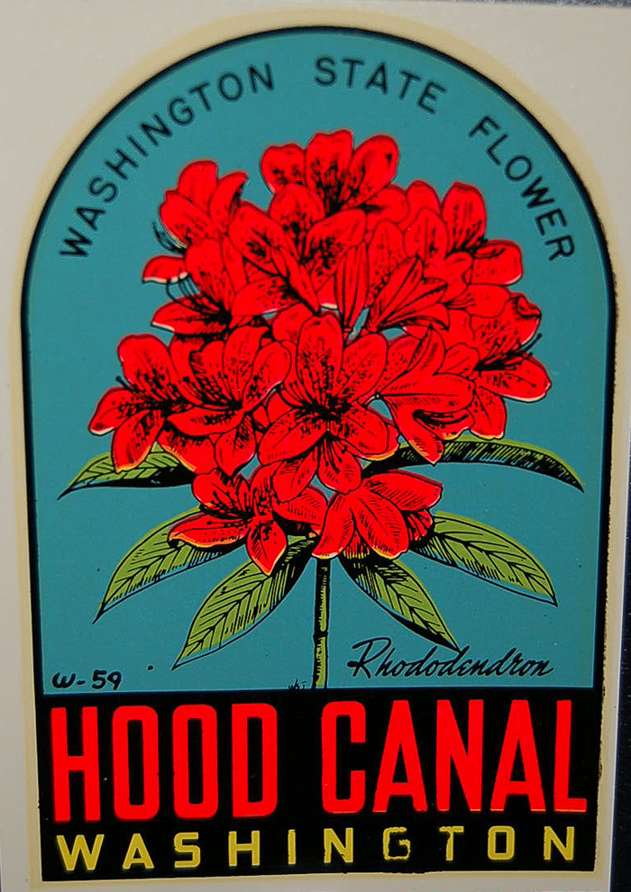 Rare Vintage Travel Decal of Hood Canal, features Washington State flower, the rhododendron