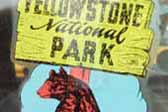 Faded Vintage Travel Decal from Yellowstone National Park features iconic park bear
