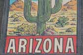 Vintage Travel Decals from Arizona features a Classic Desert Cactus