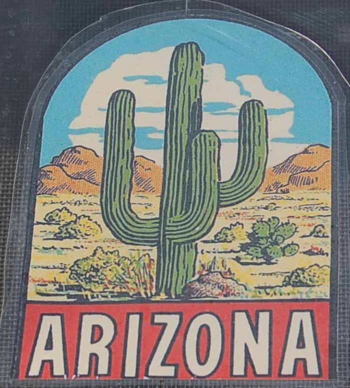 Vintage Travel Decal From Arizona Shows Desert Cactus