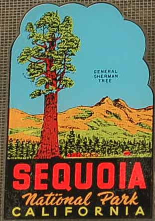 Sequoia National Park Vintage Travel Decal