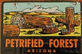 Vintage Travel Decals From the Petrified Forest in Arizona, a Popular Vacation Destination
